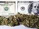 For-Investors-Legalized-Pot-Remains-a-High-Risk-Venture
