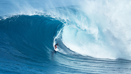 Riding the Wave of Low Volatility Funds