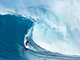 Riding-the-Wave-of-Low-Volatility-Funds